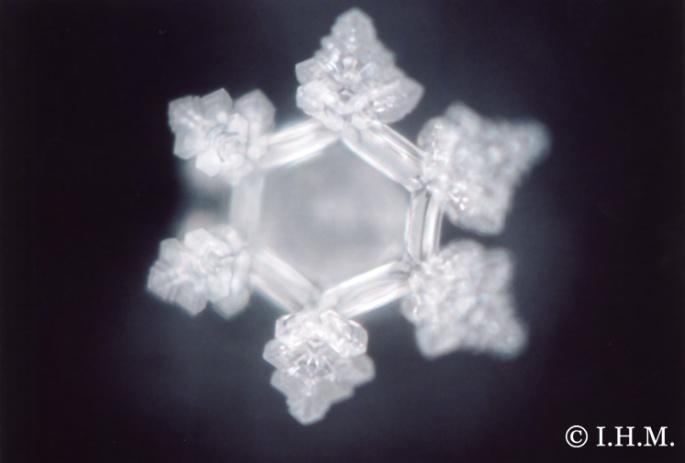 emoto water crystal