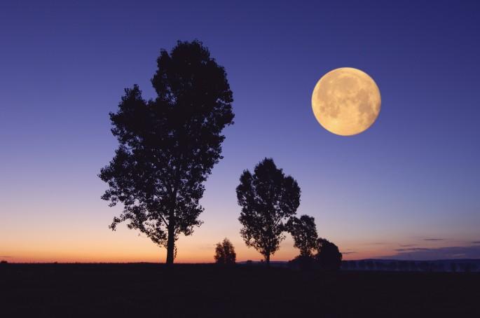 harvest moon bavaria germany