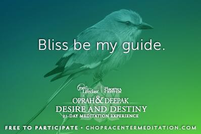 bliss be my guide