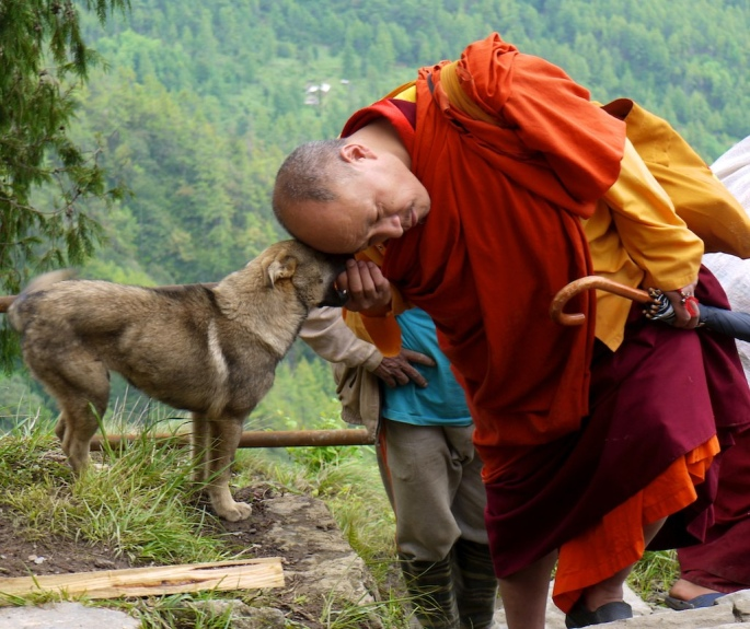 'Bhutan Monk honors stray dog' photo by Claus Nehmzow