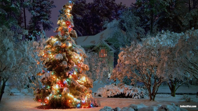 Winter-Christmas-Tree-Wallpaper-1920x1080