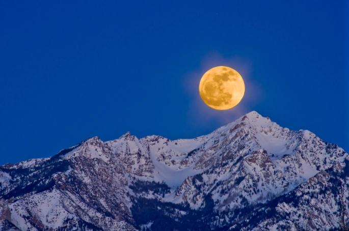 wolf moon image1