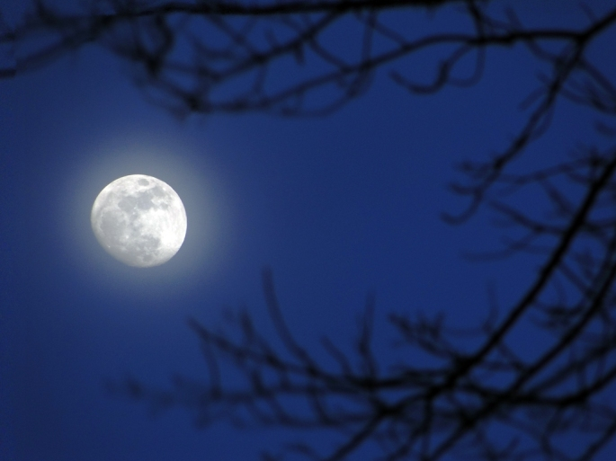 creative commons full moon march